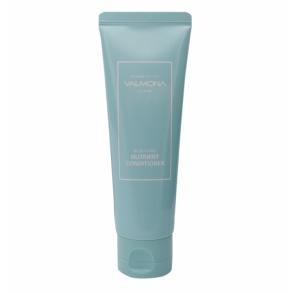 Evas Cosmetics Valmona Recharge Solution Blue Clinic Nutrient Conditioner
